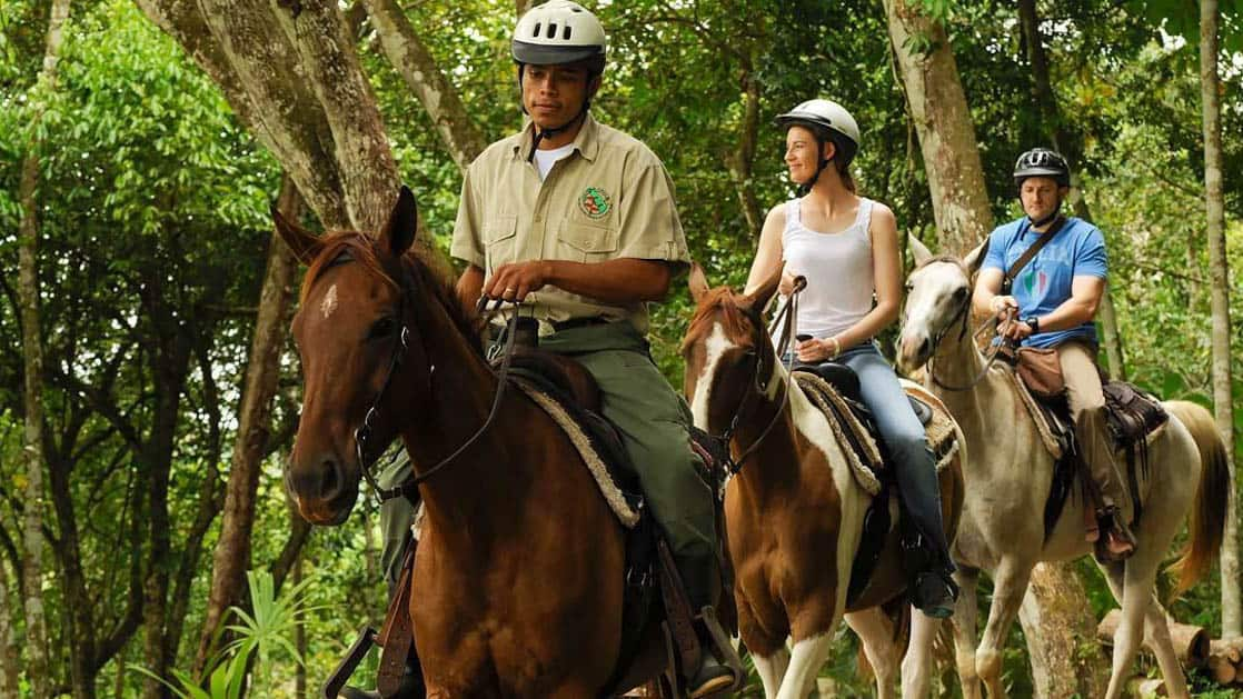 Guide leading couple on horseback riding tour in rainforest at Chaa Creek Jungle Lodge in Belize