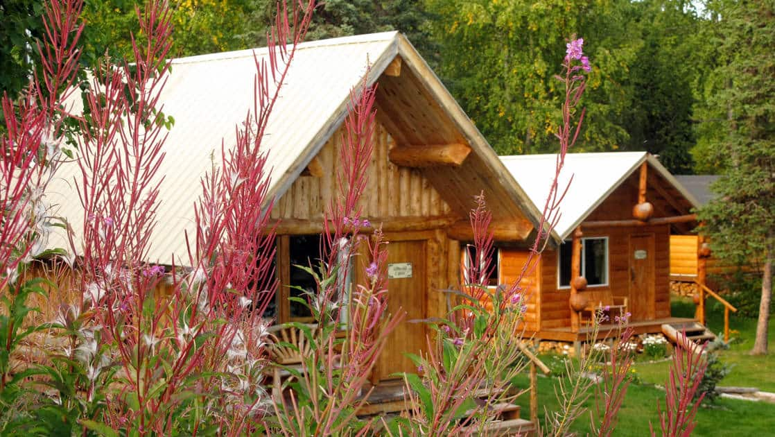 Flowers bloom in front of wood cabins at the Winterlake Lodge, an Alaska resort recognized by National Geographic for its wilderness experience