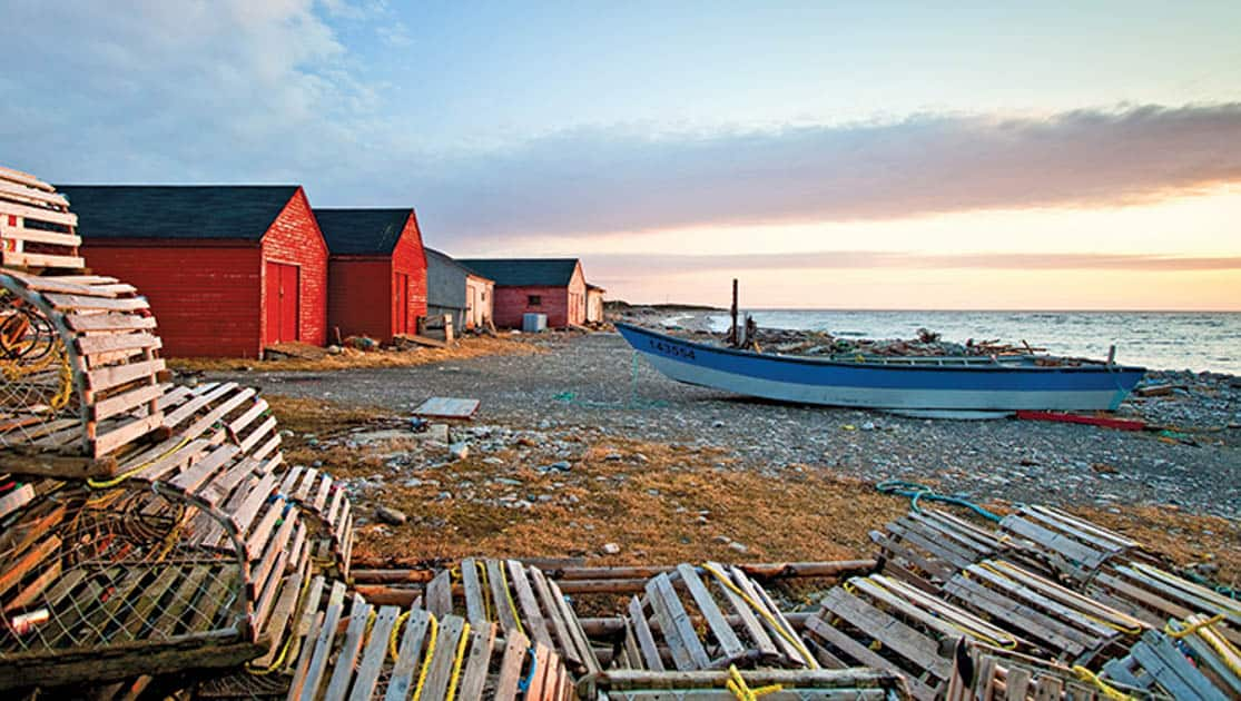 Crab pots and colorful houses at sunset in Newfoundland