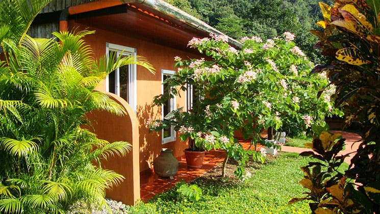 exterior of a room at the candelaria lodge in guatemala with grass and a flowering tree next to it