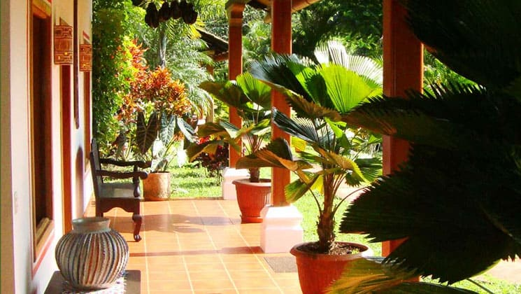porch of a room at the candelaria lodge in guatemala with potted plants, pillars and lush foliage beyond it