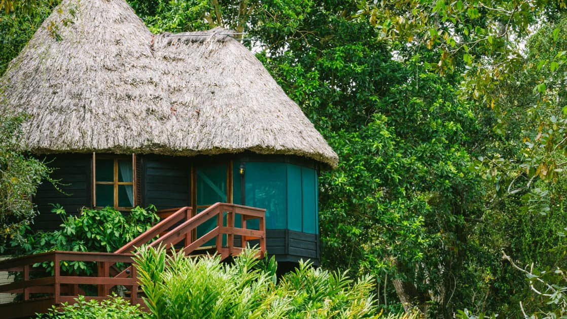Steps leading up to the tower cottage with thatched roof, perfectly placed among the trees at Chaa Creek Jungle Lodge in Belize
