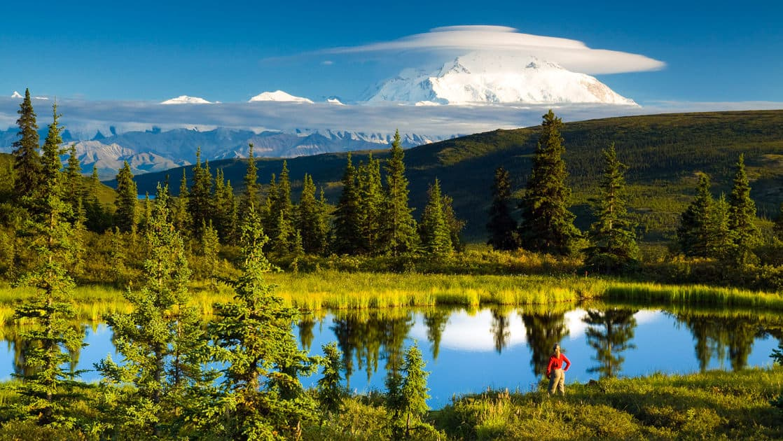 A forested scene at Camp Denali, a wilderness lodge in Alaska with deep ties to the national park, with a pond reflecting pine trees and a blue sky.