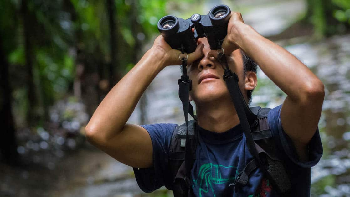 A person holds a pair of binoculars to look for wildlife and jungle birds at La Selva Amazon EcoLodge, a sustainable, luxury accommodation in Ecuador