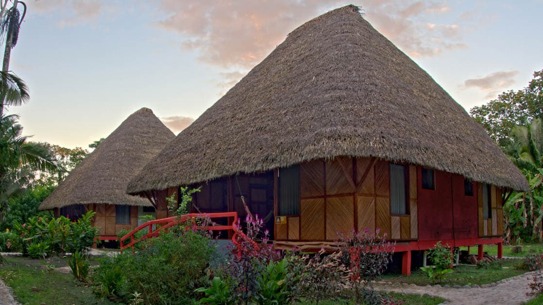 The cabanas on the grounds of the Napo Wildlife Center, with large thatched roofs, are surrounded by lush gardens and jungle in the Ecuadorian Amazon