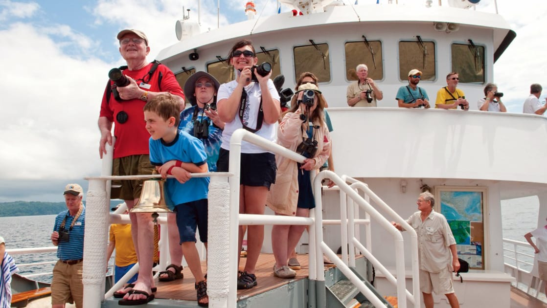 Guests aboard National Geographic Sea Bird expedition ship ready cameras for whale watching