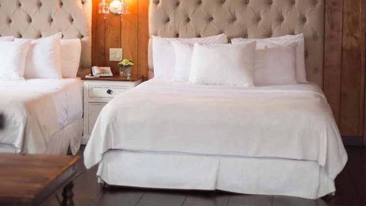 luxurious room at the finca lerida panama lodge with large white quilted beds and padded headboards