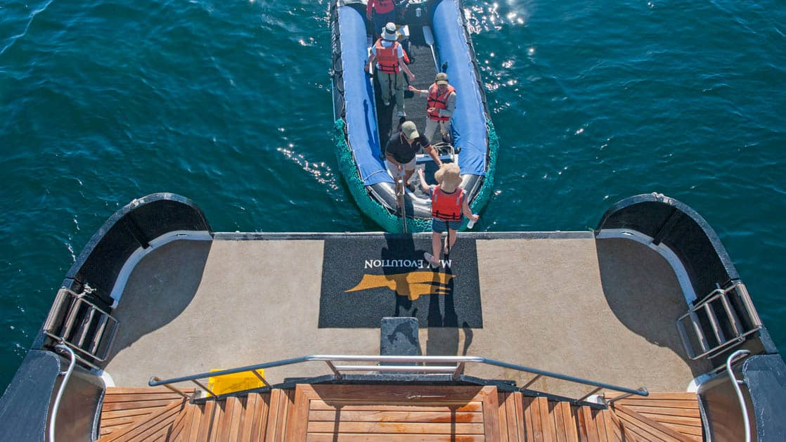 The swim step on the stern of the Evolution with a zodiac and Galapagos travelers.