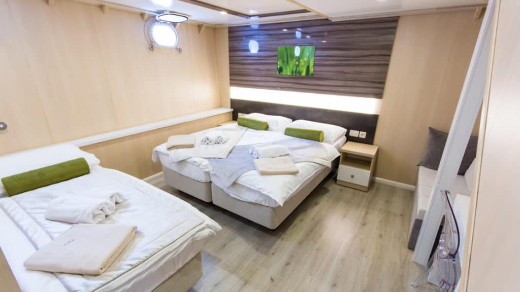 Lower Deck cabin with triple accommodation aboard Infinity