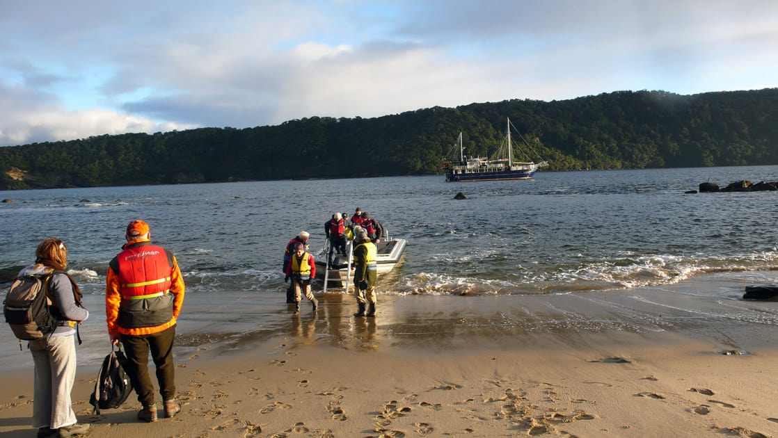 Milford Wanderer passengers disembarking off the zodiac onto a beach with the vessel anchored away in New Zealand.