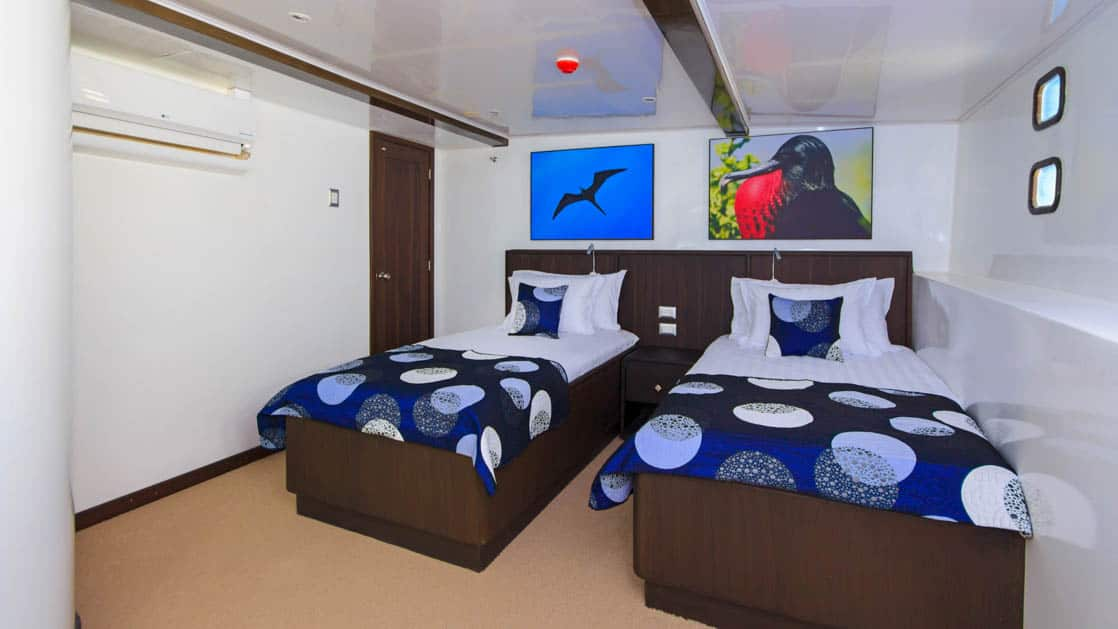 Standard Cabin with 2 twin beds and 2 portholes on Lower Deck aboard Natural Paradise Galapagos small ship