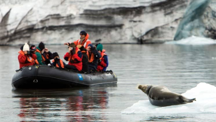 full zodiac passes nearby seal on ice in norway's fjords & arctic svalbard cruise