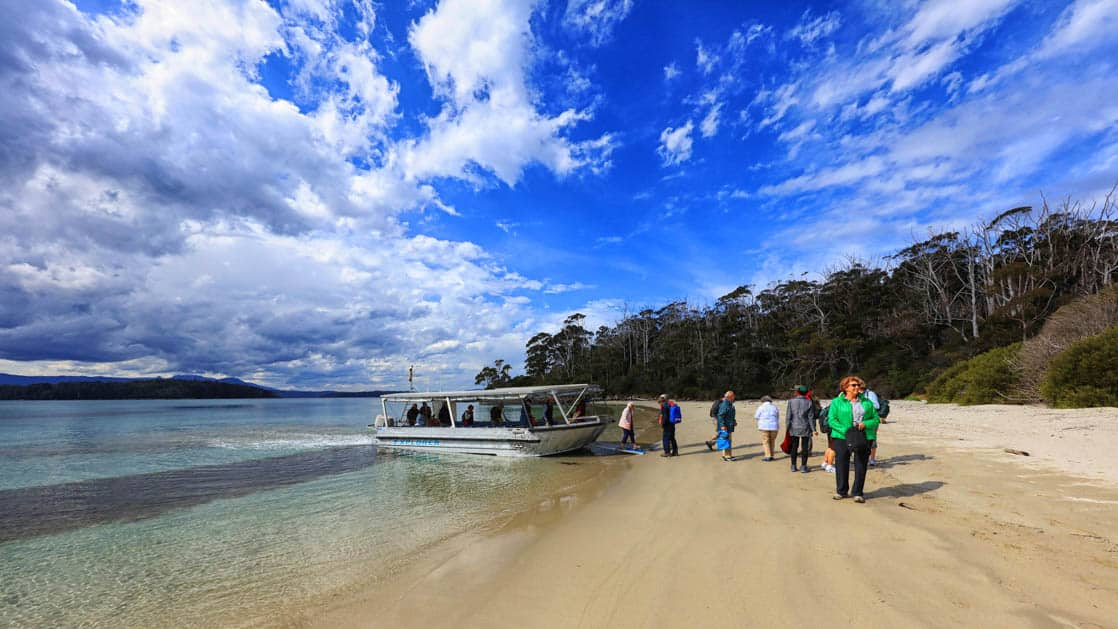 travelers step off of a skiff on the beach during the pristine tasmania small ship cruise on a sunny day