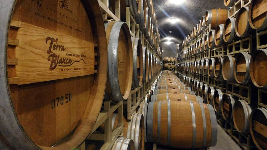rows of pacific northwest Terra Blanca wine barrels lining a room's walls and floors