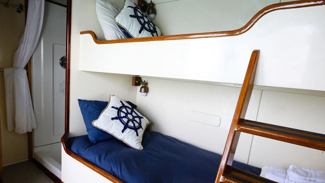 Twin bunk beds with wooden ladder, shower in Stateroom 4 aboard Sea Wolf yacht in Alaska