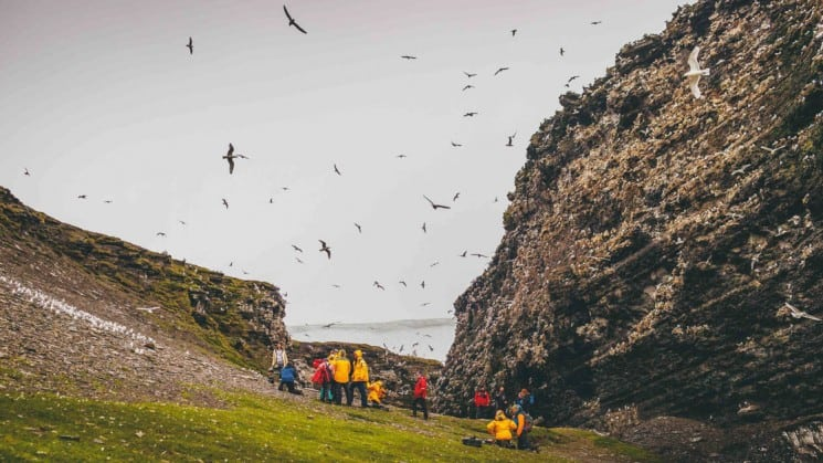 coastal birds fly over hikers resting by cliffside on spitsbergen highlights: expedition in brief arctic cruise