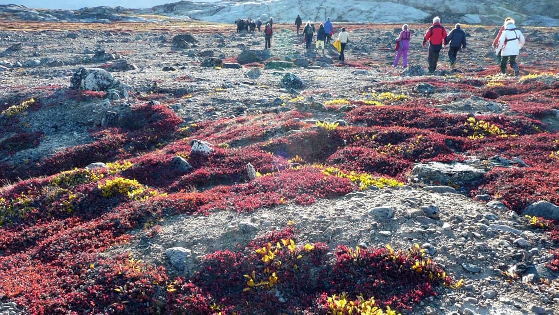 adventure travelers on a hiking tour across arctic tundra on the Spitsbergen Northeast Greenland small ship cruise trip