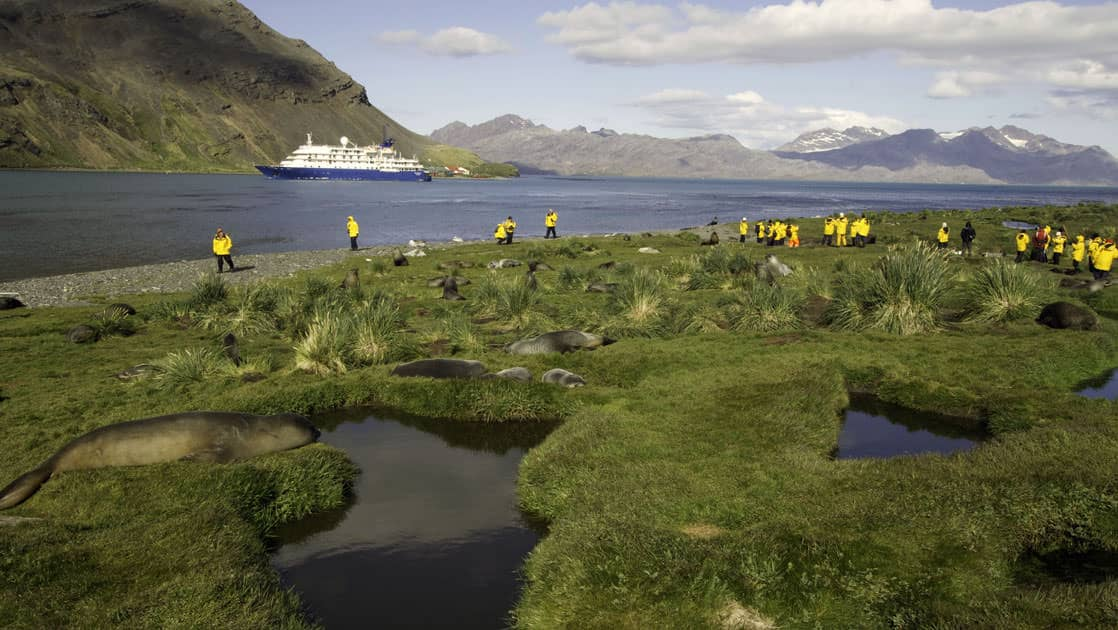 a group of adventure travelers walk on a grassy knoll back to the ocean adventurer on the three arctic islands iceland, greenland, spitsbergen small ship cruise