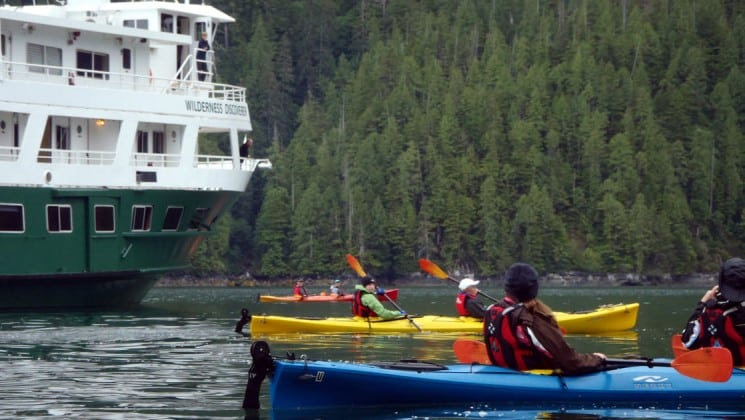 Three kayakers padding in front of their small ship cruise in Alaska