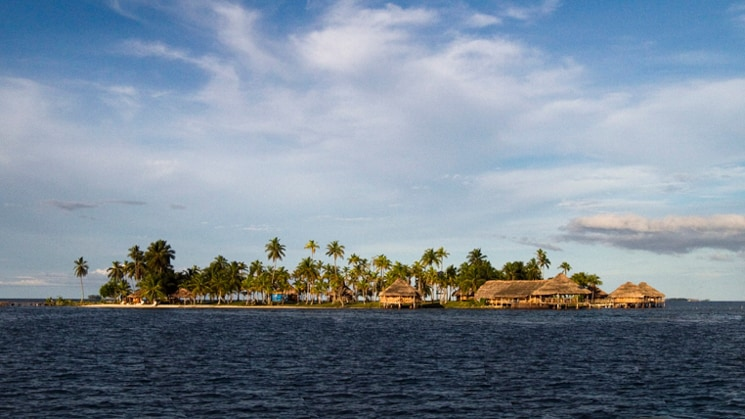 An island with grass huts and palm trees surrounded by water