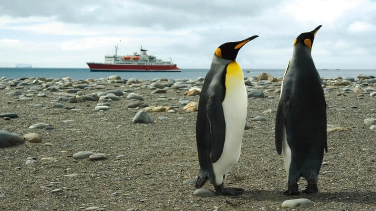 Two penguins on a beach with the M/S Expedition ship of the Spirit of Shackleton Aboard cruise in Antarctica