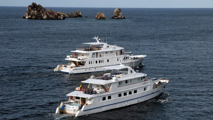 The Coral I and Coral II are sister cruises that offer the comfort and space of a small ship while traveling through the Galapagos Islands.