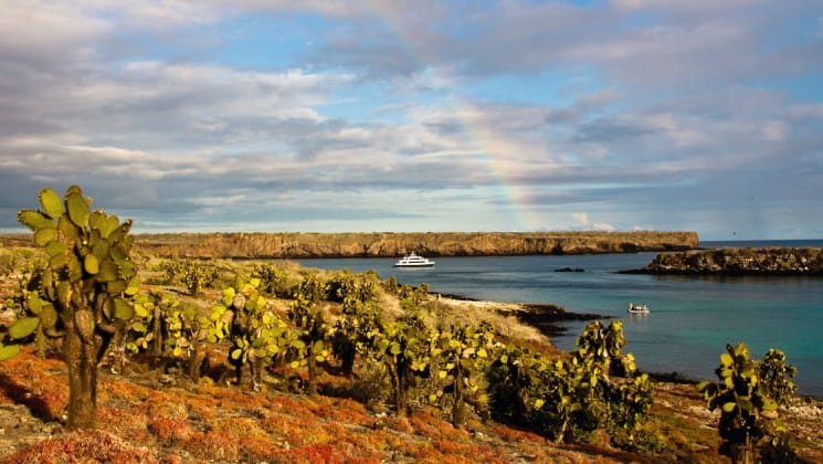 A rainbow arches over the sky with cactus in the foreground and the Letty ecoventure yacht anchored in the bay in the background at the galapagos islands