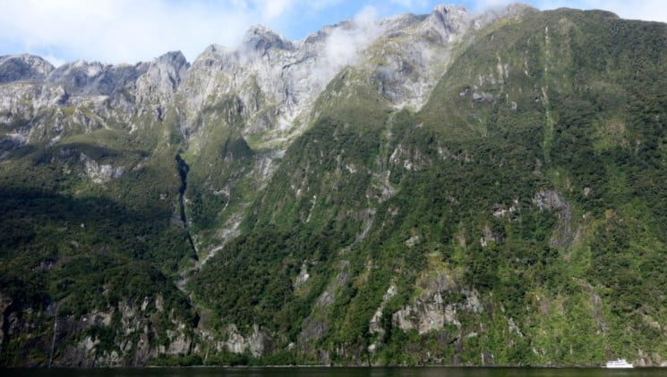 The view of the green hillsides and rocky mountains from the water in the New Zealand's fiordland