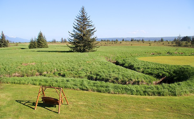 Property at Bear Track Inn wilderness lodge in Gustavus Alaska and a wood swing overlooking the green meadow.