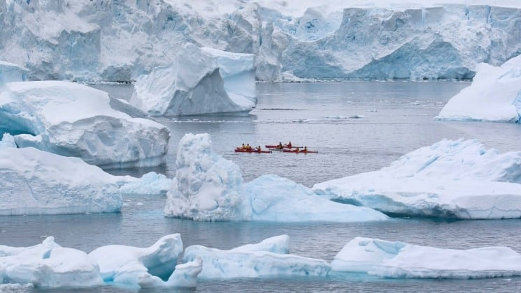 a group of kayaks navigate the ocean through icebergs in antarctica
