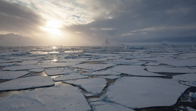 cracks in ice floating on water while the sun sets in the background, from the crossing the antarctic circle cruise