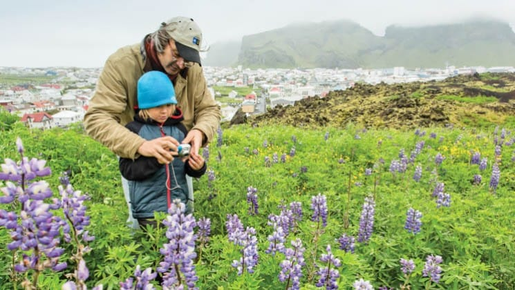 a man and a boy look at purple wildflowers in iceland, as part of the voyage on the national geographic explorer