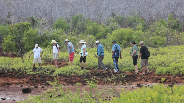 A group of passengers on the Coral cruise ships take a land excursion to hike a trail on the Galapagos Islands.
