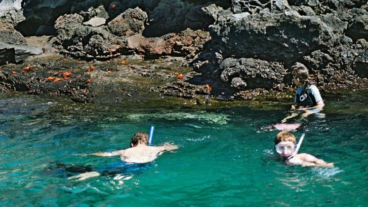 snorkelers swim in clear, turquoise water with rocks in the background at the galapagos islands