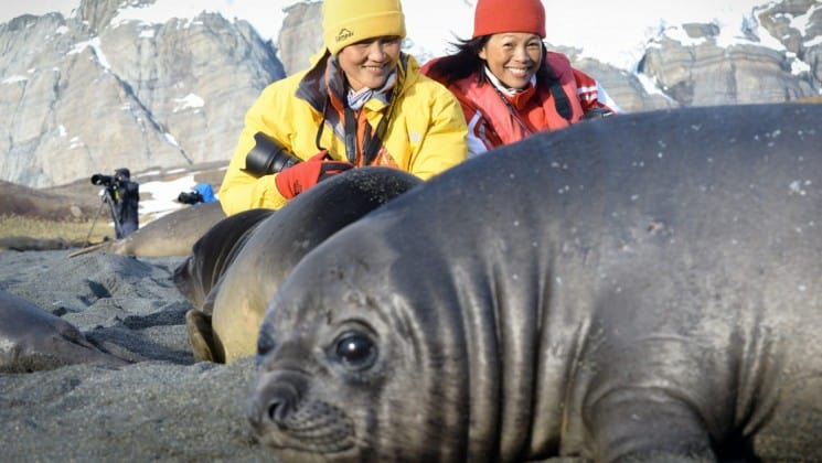 Two women crouch low to get a good, close view of a sleeping elephant seal and its pup in antarctica