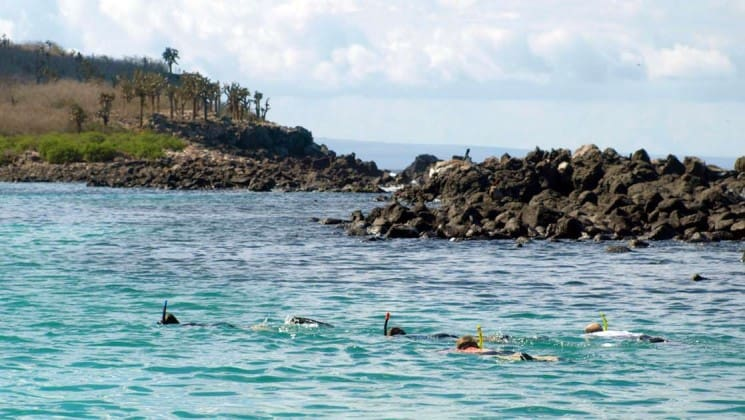guests from the sea star journey luxury cruise ship go on a snorkeling excursion in a bay near the Galapagos islands