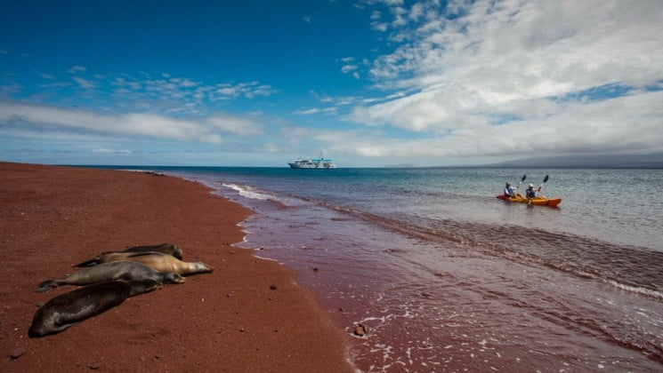 Two passengers of the Isabela luxury yacht sit on a blanket on a red sand beach, near seals basking in the evening sun, with the ocean in the foreground, at the Galapagos Islands.