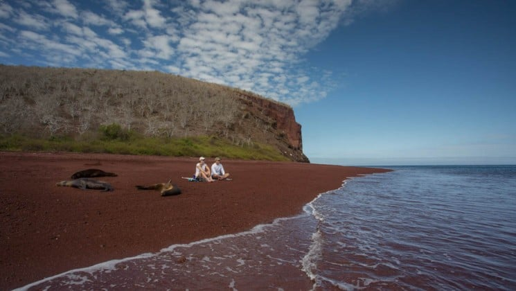 Seals rest on a red-sand beach while a couple kayaks on the ocean, just beyond the shoreline, at the Galapagos Islands