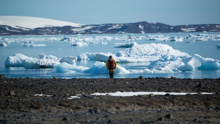 a person walks on a rocky beach toward the frozen ocean with icebergs in the arctic