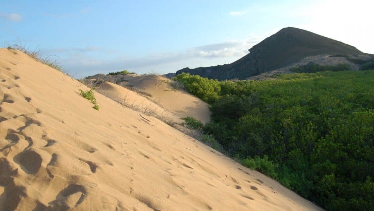 The crest of a sand dune leads toward a pointed mound in the distance, under blue sky, at the Galapagos Islands