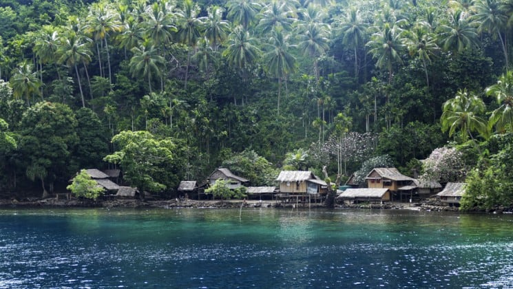 thatch roof huts along the coastline of a papua new guinea's sewa bay in the pacific islands