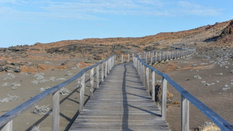 a board walk takes passengers from the ocean spray cruise ship to the path to explore the galapagos islands