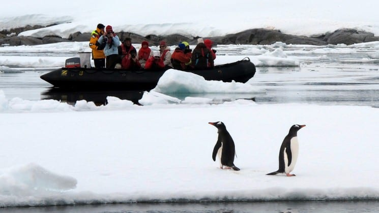 A zodiac takes passengers from the polar circle air cruise to see penguins on an iceberg in antarctica