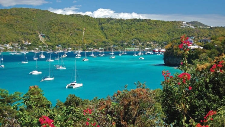 sail boats are anchored in a tropical bay in the caribbean port town of tobago