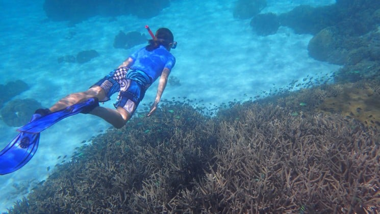A snorkeler swims underwater through a reef in indonesia's spice islands