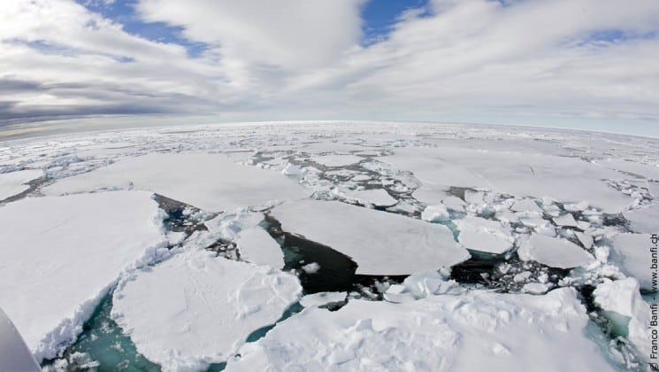 a landscape portrait of sea ice and cracks revealing cold ocean water in the arctic circle