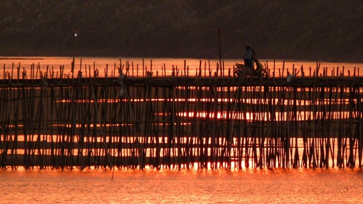 the view of the mekong river at sunset with bamboo silhouetted on the small ship cruise to vietnam and cambodia
