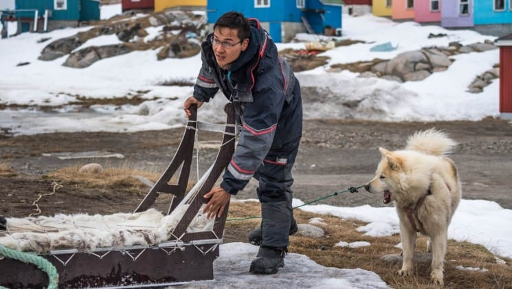a man loads up a dogsled in an inuit village in the arctic circle while a dog looks on