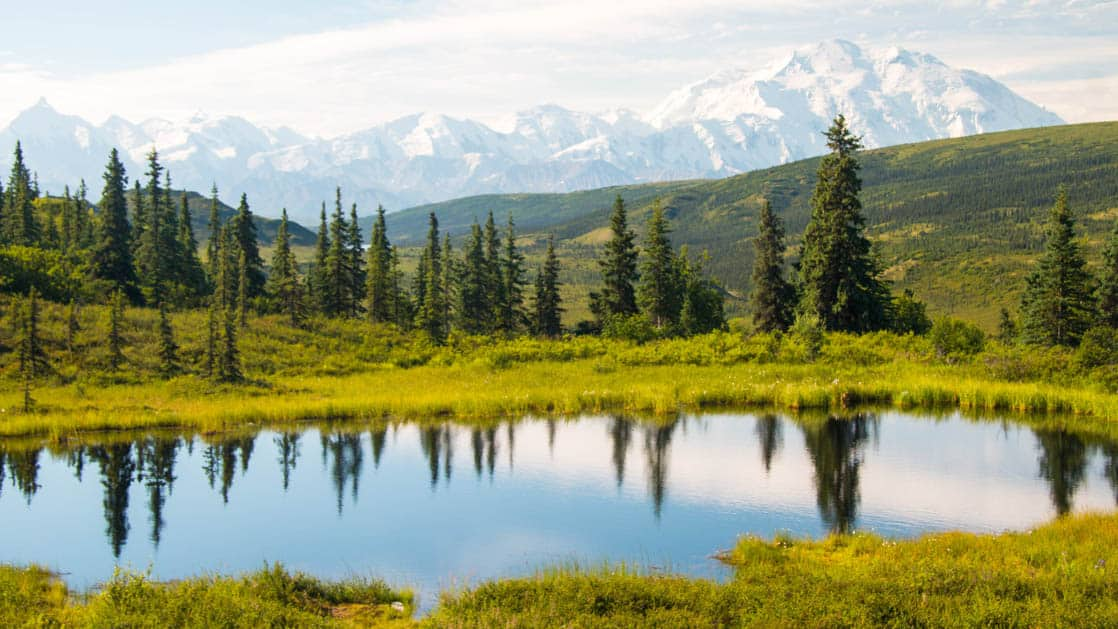 View of Denali and Wonder Lake in Alaska with reflection of trees and mountains.