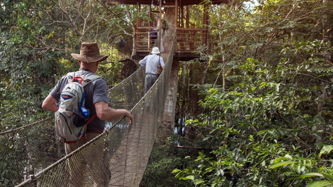 Two people walking across a suspension bridge to a hut across the canopy in the Pervuian Amazon rainforest